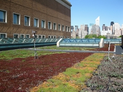A green roof at Con Edison Training Center in Long Island City, Queens, keeps heat in the building in the winter and keeps heat out in the summer. Photo via coned.com.