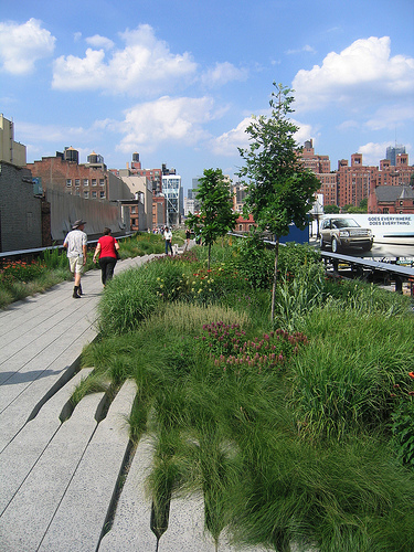 View from the High Line. Photo by