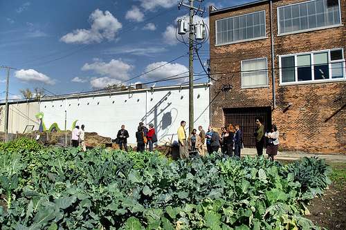 Urban farms, such as Earthworks in Detroit are one way to improve food access in neighborhoods without grocery stores.