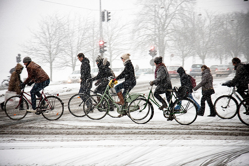 Follow their lead and don't let the winter blues keep you from getting on your bike! Photo by Colville-Andersen.