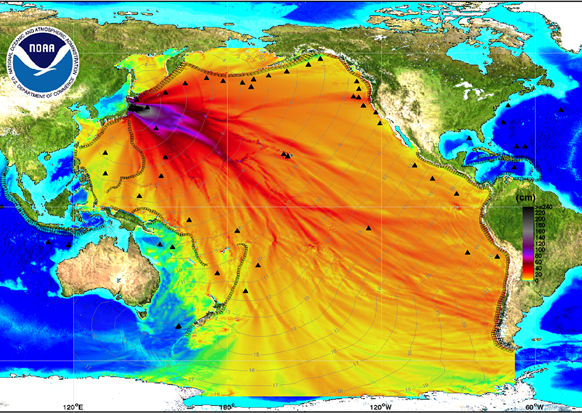 The above image was created by using data collected by tsunami buoys to estimate the wave arrival time and the wave height of the tsunami. Photo by NOAA via Technology Review.