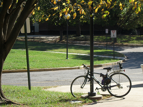 University campuses across the U.S. are working to incorporate bicycle culture into the daily lives of students. Photo by christine592.